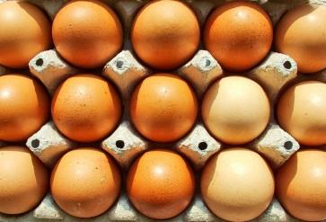 eggs-1561798