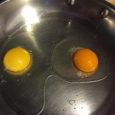 Eggs Holiday's Farm