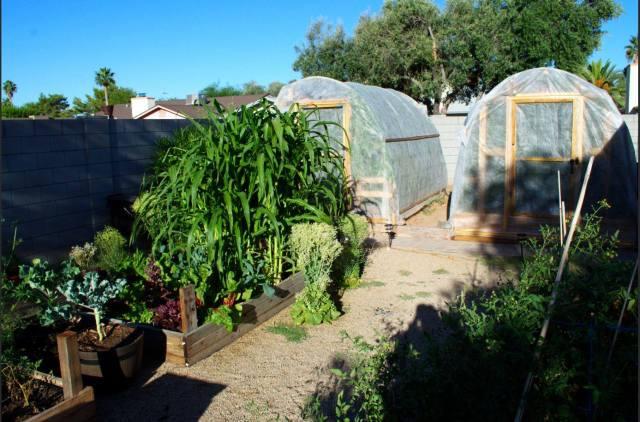 Mission Gardens Hoop Houses